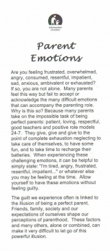 <h5>PARENTS' EMOTIONS</h5><p>What about those well-meaning in-laws, parents or spouses? How do you deal with overwhelming expectations? Tips on healthy ways to deal with feelings.</p>